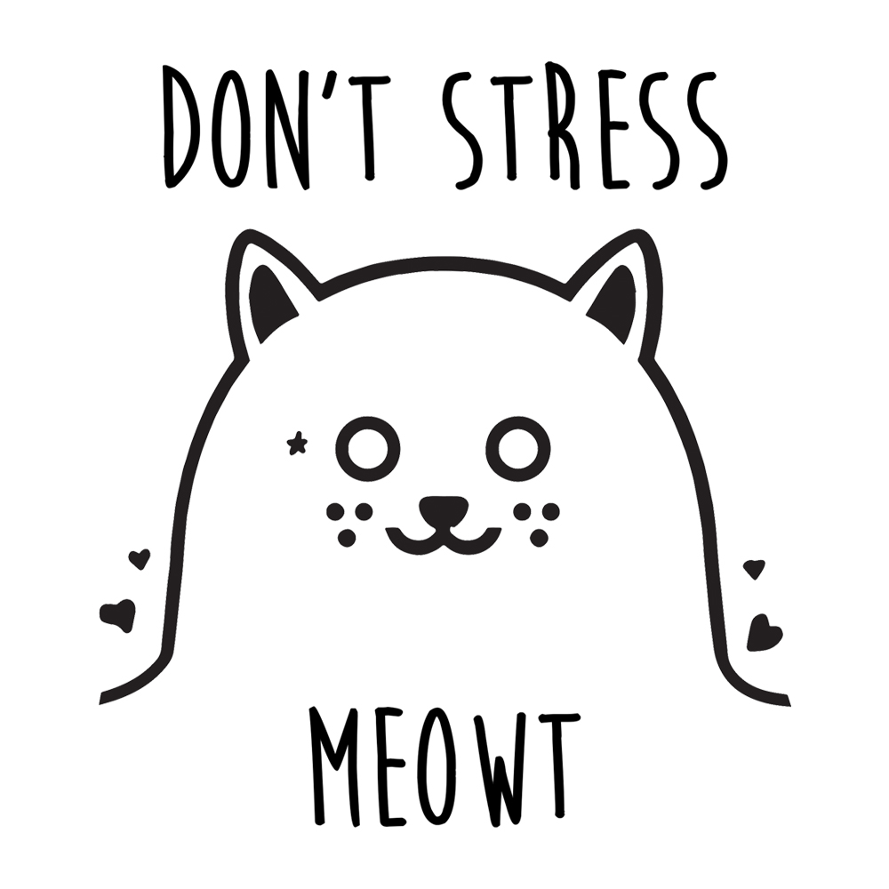 dont stress meowt cody schneider